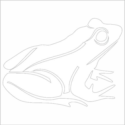 Samolepka Žába