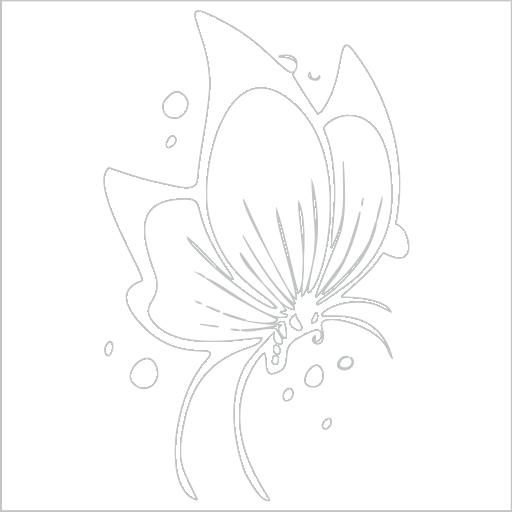 Samolepka Motýl - zvìtšit obrázek