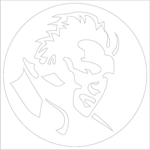 Samolepka Elvis Presley