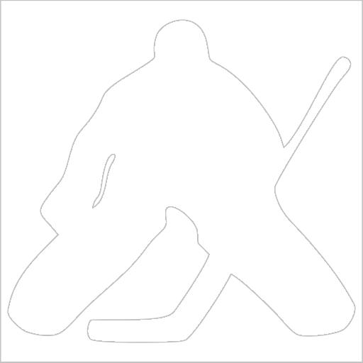 Samolepka Hokejový brankáø