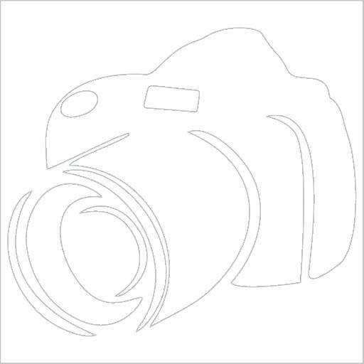 Samolepka Fotoaparát