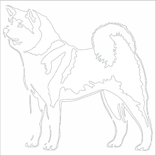 Samolepka Akita - zvìtšit obrázek