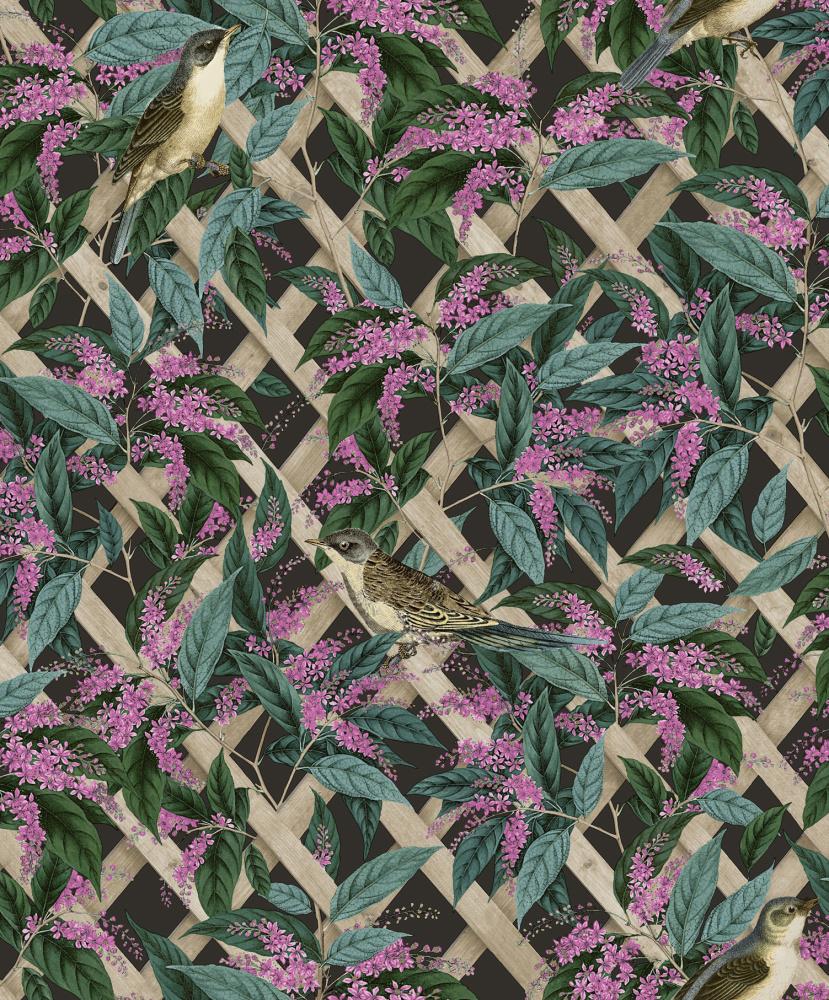 Vliesová tapeta Brassica Uhlová - zvìtšit obrázek